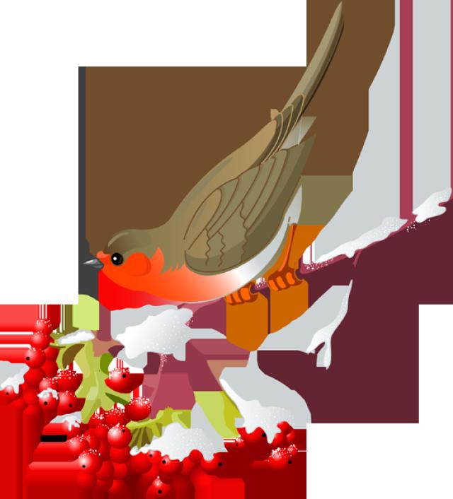 Pretty bird clipart #10