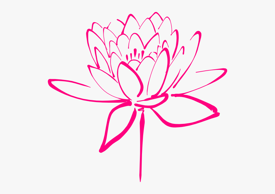 Lotus Tattoo Google Search To.