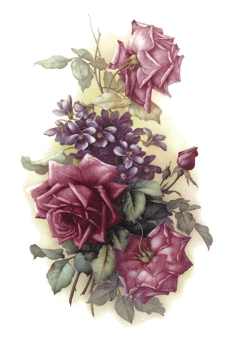1000+ images about Rose Vintage Rose on Pinterest.