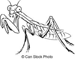 Mantis Illustrations and Clipart. 361 Mantis royalty free.