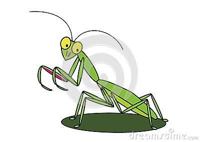 praying mantis clip art #23.