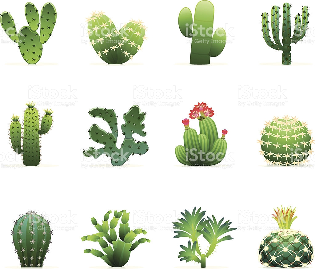 Prickly clipart - Clipground