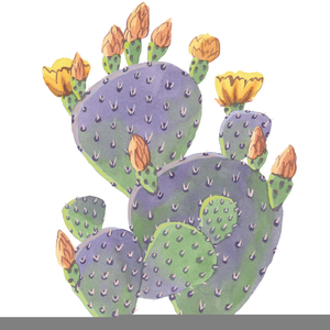 Prickly Pear Cactus Clipart.