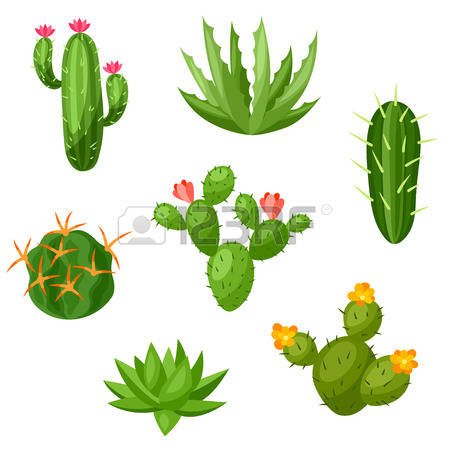 Prickly Plant Images & Stock Pictures. Royalty Free Prickly Plant.