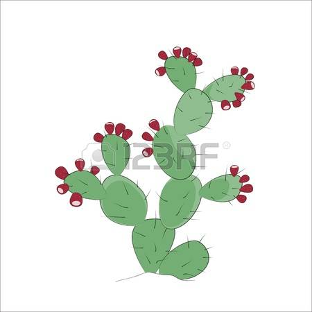 1,552 Prickly Plant Stock Illustrations, Cliparts And Royalty Free.