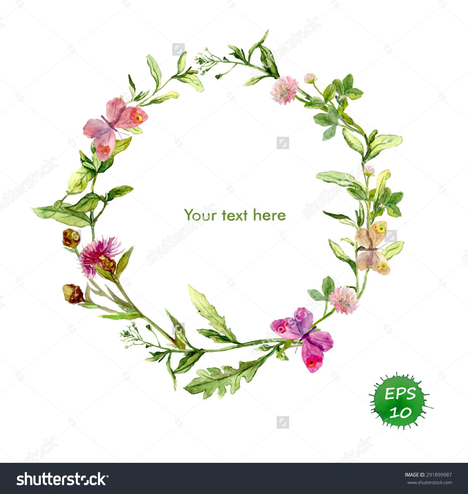 Wreath Border Frame Summer Herbs Meadow Stock Vector 291899987.