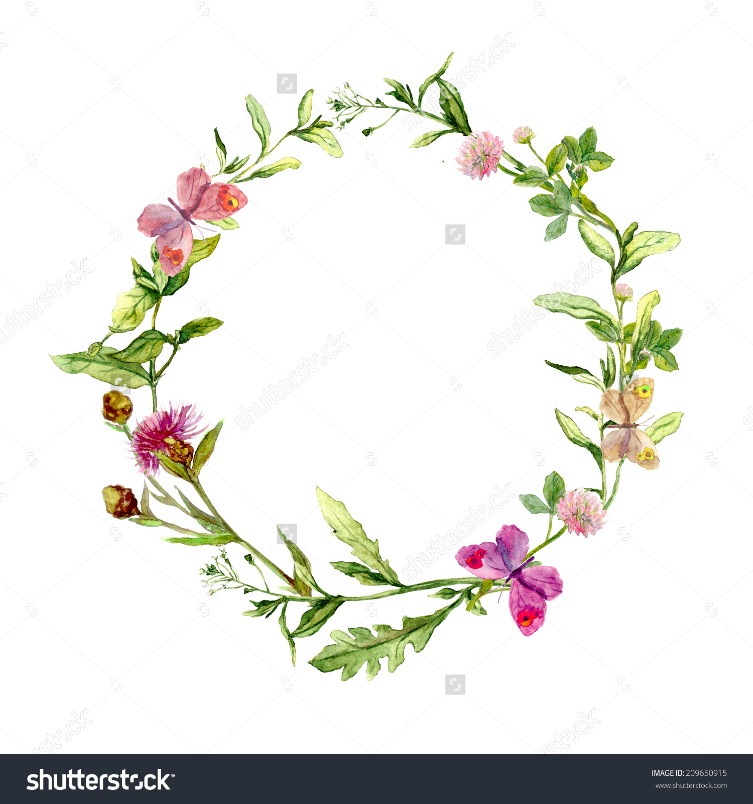 Wreath Border Frame Summer Herbs Meadow Stock Illustration.