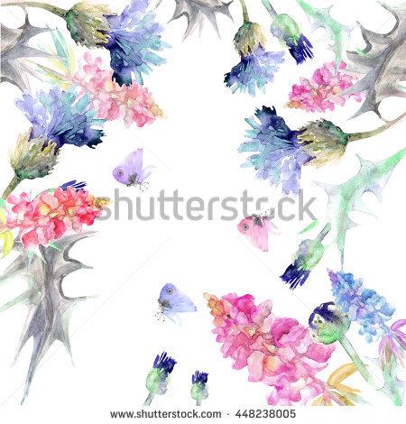 White Thistle Bloom Stock Photos, Royalty.