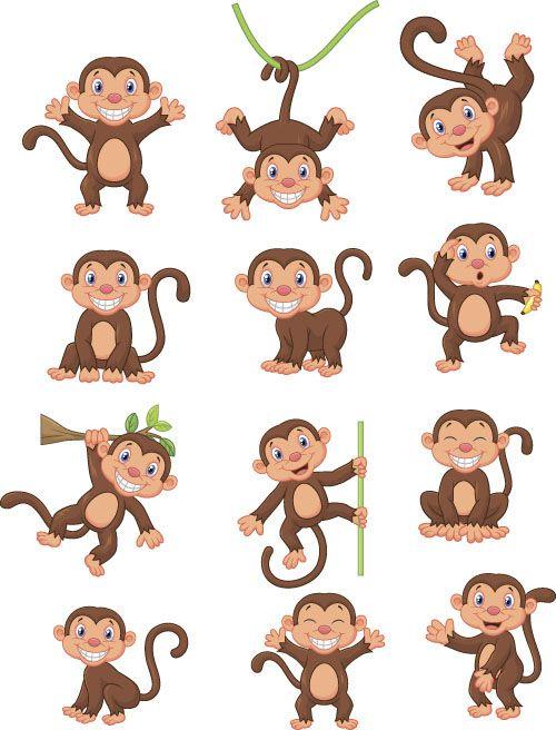 1000+ images about Monkeys, Primates on Pinterest.