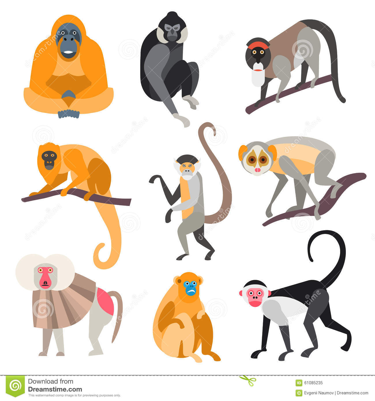 Set Of Primates And Monkeys. Vector Illustration Stock Vector.