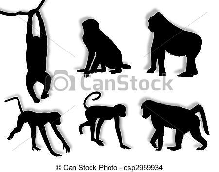 Primates Stock Illustrations. 5,674 Primates clip art images and.