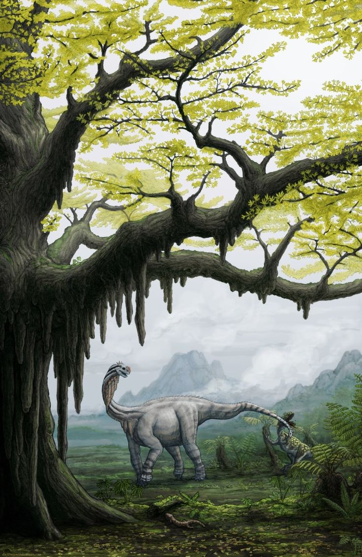 1000+ images about The Primeval World on Pinterest.