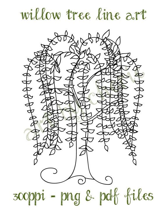Willow Tree Line Art, Willow Tree Clip Art, PNG and PDF.