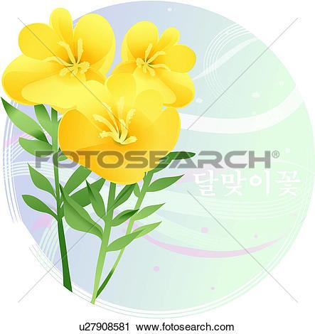 Clipart of flowers, evening primrose, flower, plants, plant, bloom.
