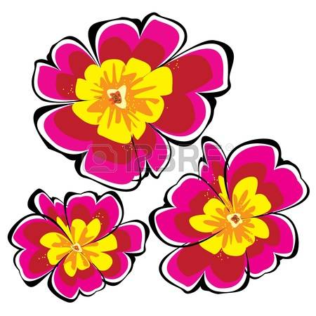 970 Primrose Stock Vector Illustration And Royalty Free Primrose.