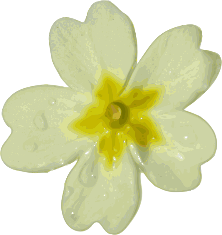 Free Clipart: Flower.