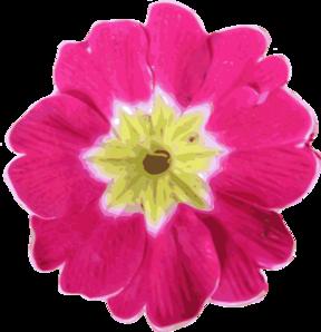 Purple Primula Clip Art at Clker.com.