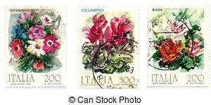 Primulaceae Stock Illustrations. 3 Primulaceae clip art images and.