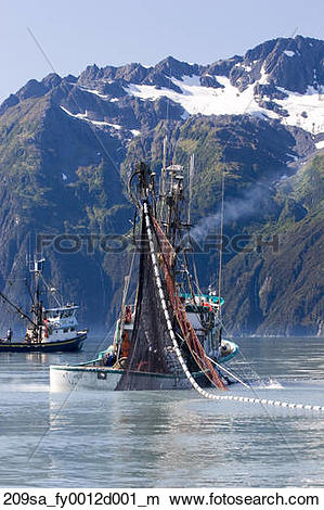 Stock Photo of Commercial fishing boat *Malamute Kid* seining for.