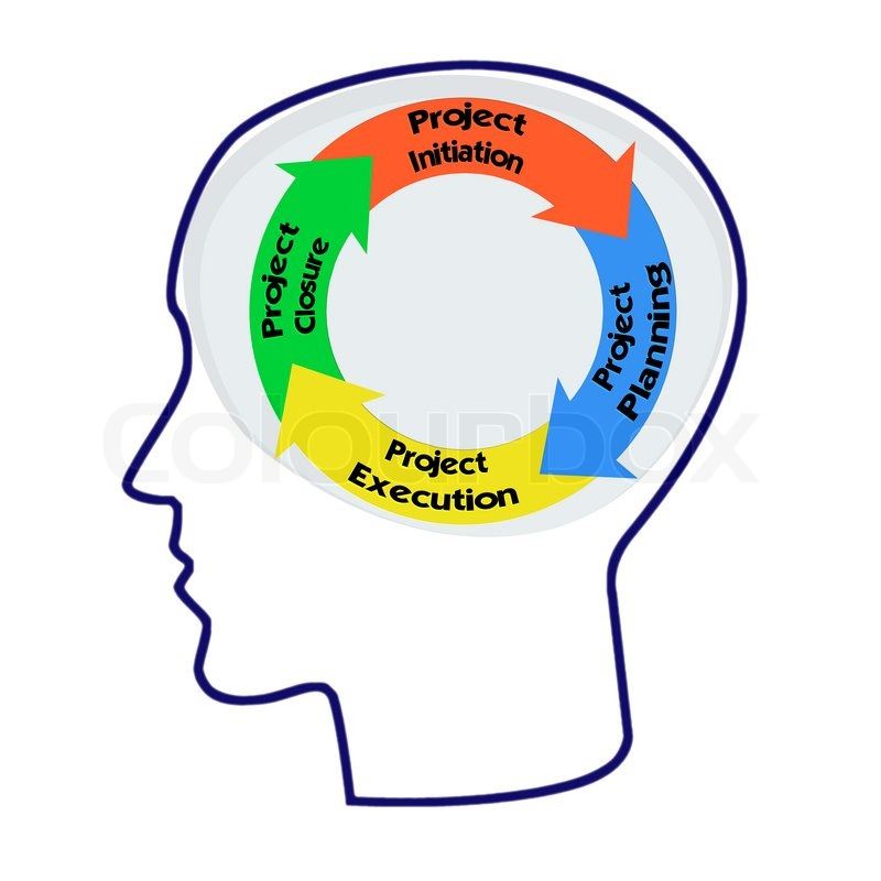 Head with PRINCE2 model for project.