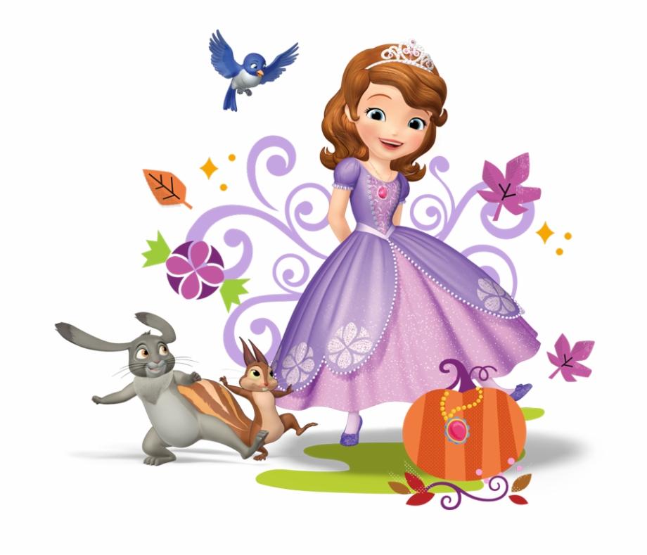 Tshirt, Princess, Disney Princess, Flower, Art Png.