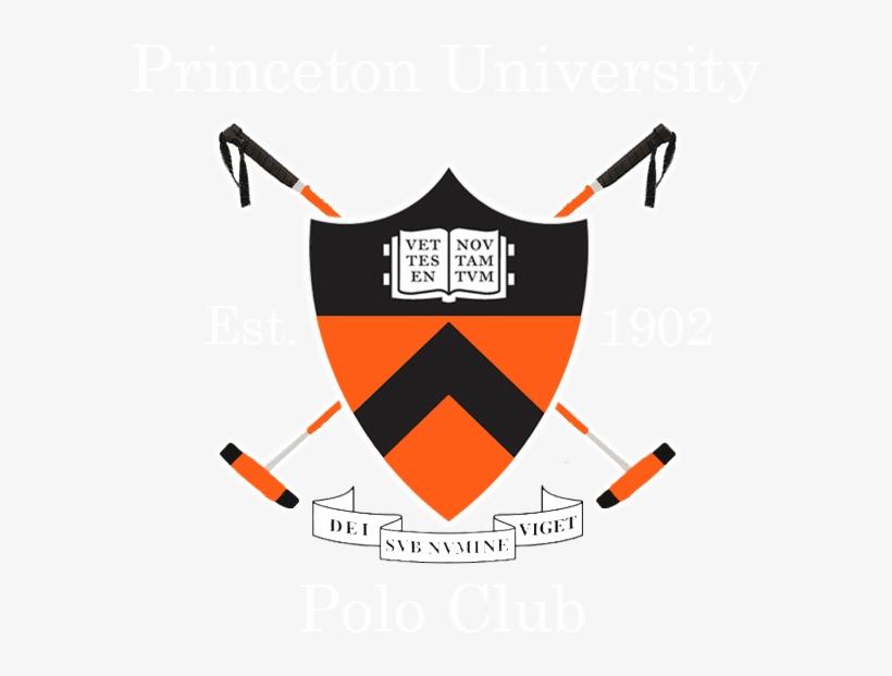 Princeton University Tiger Logo.
