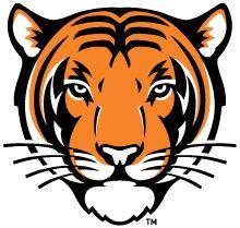 Princeton Logo.