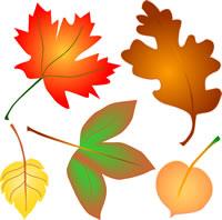 Autumn Leaves Clip Art, Fall Foliage 4 Seasons Graphics.