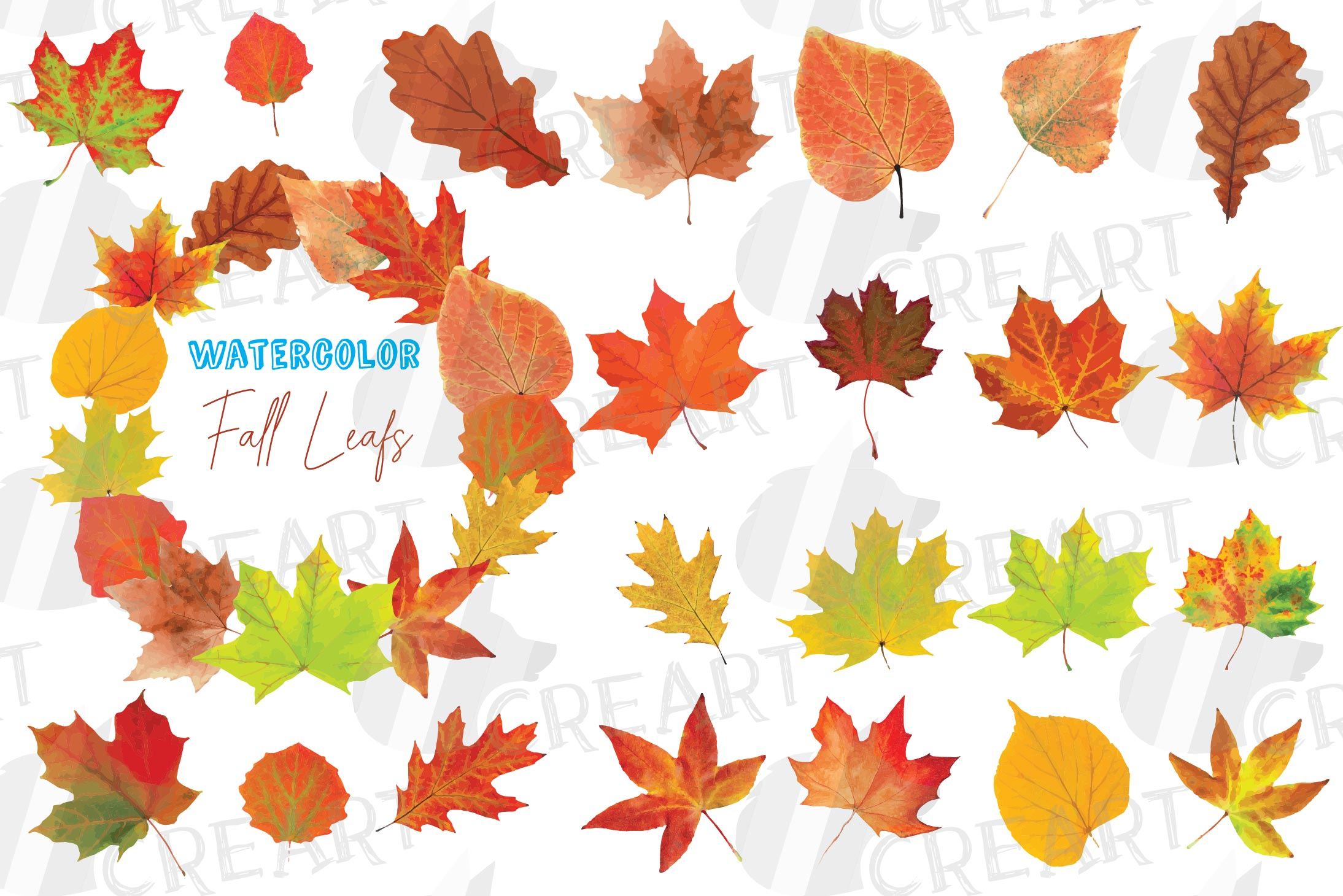 Autumn leaves decor clip art. Printable watercolor fall leaf.