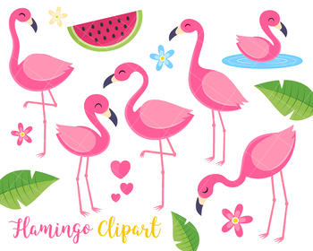 Flamingo Clipart, Tropical Summer Clipart, Birds, Tropical plants.
