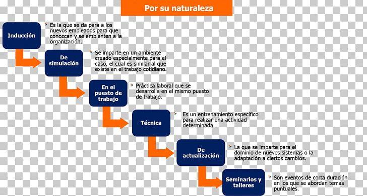 Teacher Education Programa De Capacitación Empresa Pedagogy.