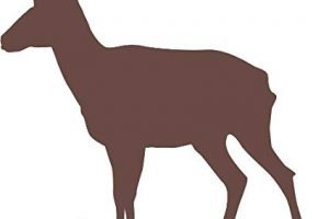 Pronghorn antelope clipart 5 » Clipart Portal.