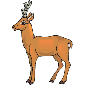 Pronghorn Antelope Clipart clip art 12.