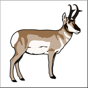 Clip Art: Pronghorn Color 2.