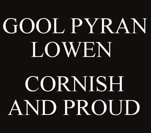 PROPEST SOLUTIONS (@propestcornwall).