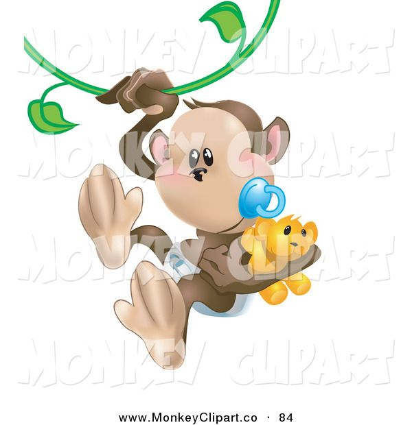 1000+ images about I love Monkey's on Pinterest.