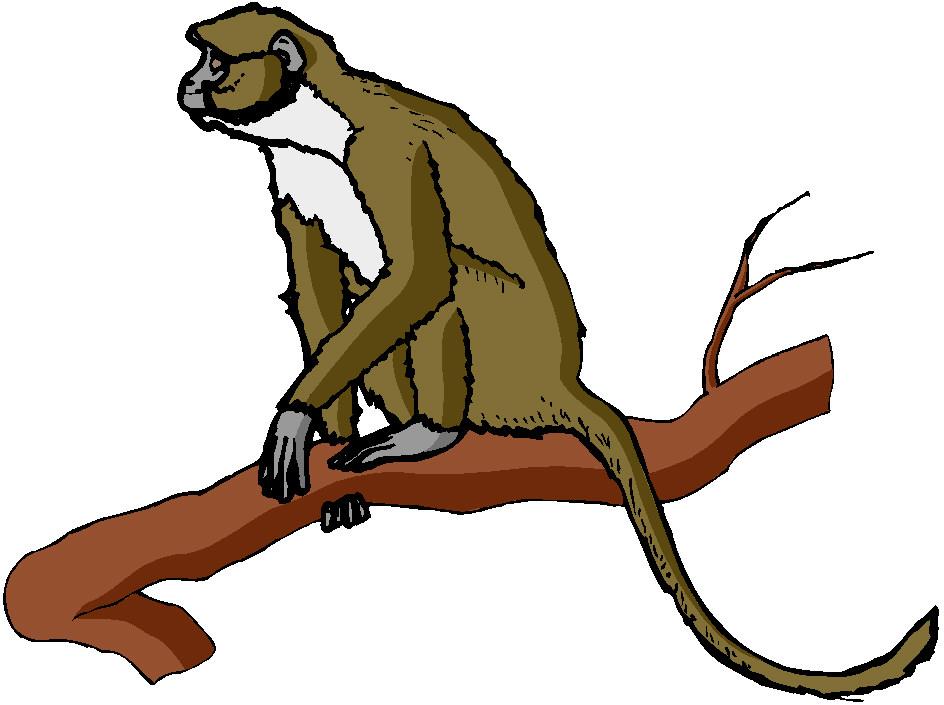 Monkeys Clip Art.
