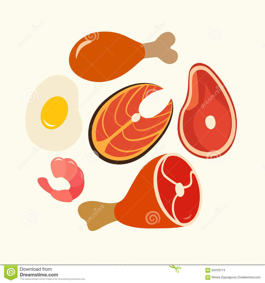 Download protein food vector clipart High.