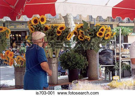 Stock Photography of Flower Market, Place de l'Hôtel, Aix.