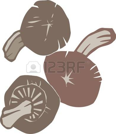 719 Provisions Stock Vector Illustration And Royalty Free.