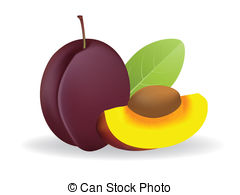Prune Clip Art Vector Graphics. 1,353 Prune EPS clipart vector and.