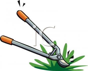 Garden Tool.