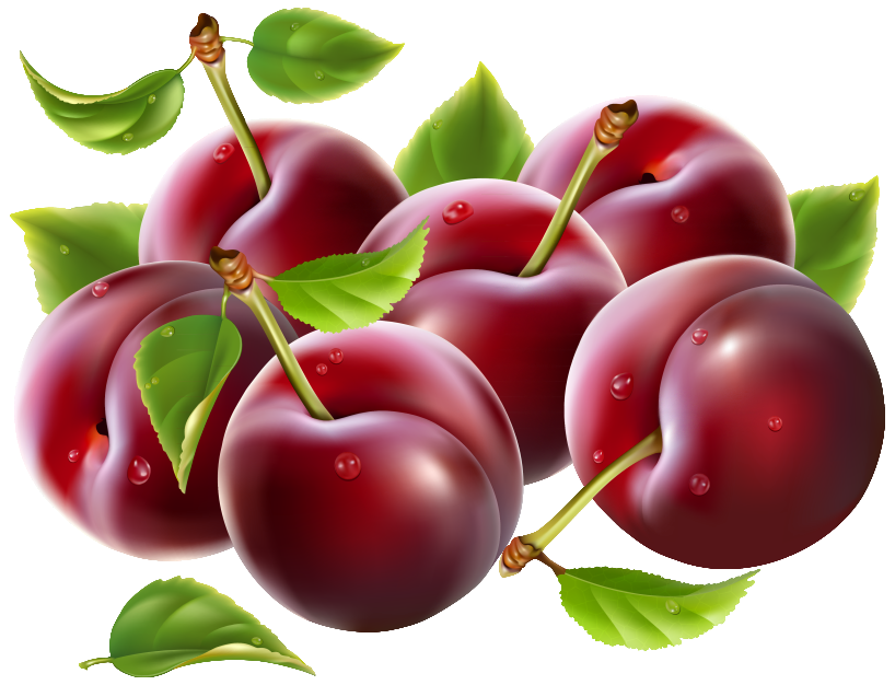 Prunes PNG Clipart Image.