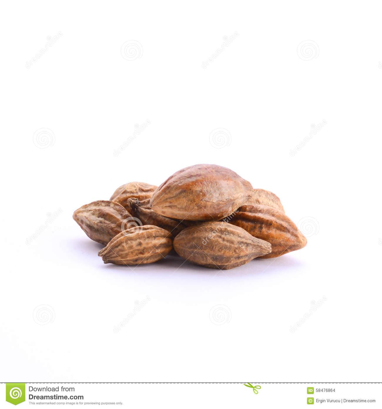 Bitter Almond.