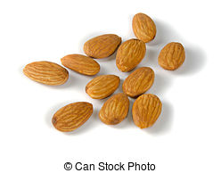 Stock Photos of Almonds (Prunus amygdalus).