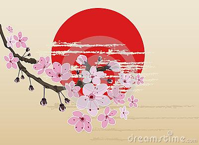 Prunus Laurocerasus Studio Stock Illustrations.