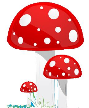 Drugs: Magic Mushrooms (Psilocybin).