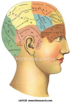 Psychology Clipart.
