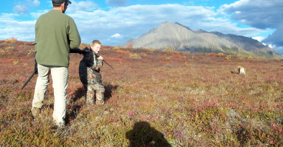 Ptarmigan Hunting Alaska, Denali Highway, Alpine Creek Lodge.