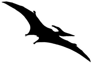 Pterodactyl Psf B.